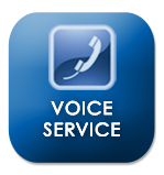 Voice Service Button